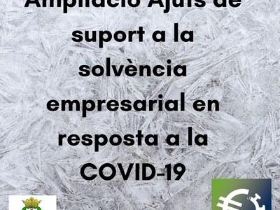 Ampliació Ajuts de suport a la solvència empresarial en resposta a la COVID-19