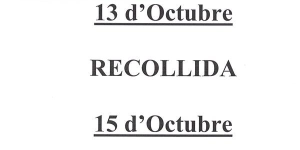 RENOVACIÓ DNI